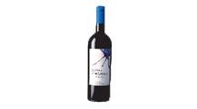 Portugese wijnspelers van wereld formaat